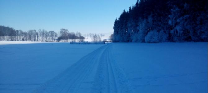 V lyžařské stopě